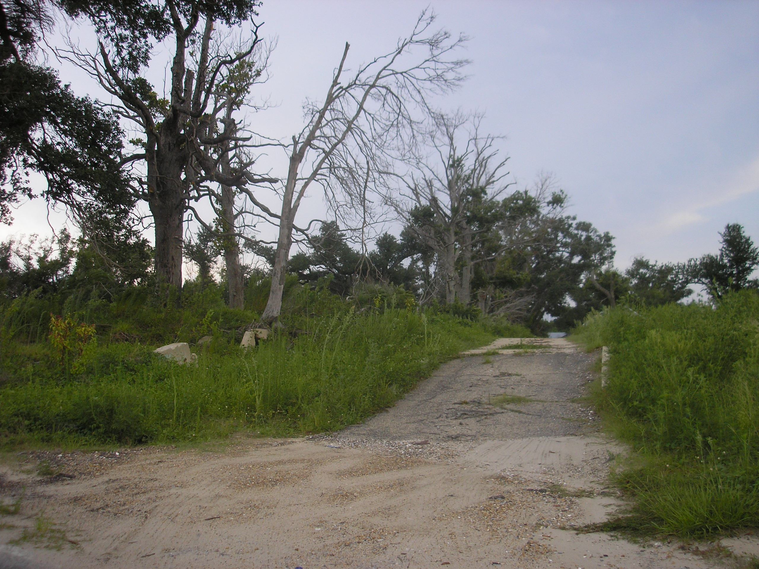 Vacant lots are everywhere, not just along the beach, and the feeling you get from driveway after driveway with no home attached is hard to explain.
